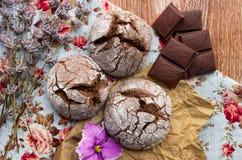 μπισκότα σοκολάτας σπιτ&iot Στοκ Εικόνα