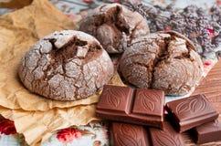 μπισκότα σοκολάτας σπιτ&iot Στοκ Εικόνες