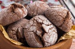 μπισκότα σοκολάτας σπιτ&iot Στοκ φωτογραφία με δικαίωμα ελεύθερης χρήσης
