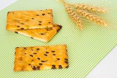 μπισκότα σοκολάτας τσιπ Κλαδίσκος σίτου Στοκ φωτογραφίες με δικαίωμα ελεύθερης χρήσης