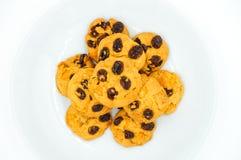 Μπισκότα σταφίδων και δημητριακών Στοκ Εικόνα