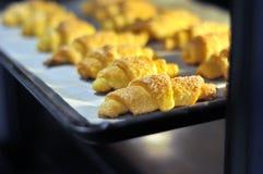 Μπισκότα στο φούρνο στο φύλλο ψησίματος στοκ φωτογραφίες