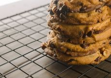 Μπισκότα τσιπ σοκολάτας που συσσωρεύονται Στοκ φωτογραφία με δικαίωμα ελεύθερης χρήσης