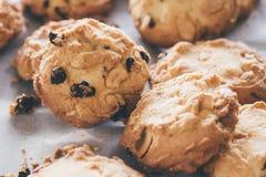 Μπισκότα τσιπ σοκολάτας Στοκ Φωτογραφίες