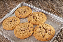 Μπισκότα τσιπ σοκολάτας homemaid, ψημένος Στοκ Εικόνες