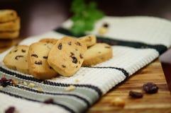 Μπισκότα των βακκίνιων στοκ φωτογραφία με δικαίωμα ελεύθερης χρήσης