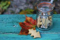 Μπισκότα φθινοπώρου σε ένα αναδρομικό βάζο γυαλιού Στοκ εικόνες με δικαίωμα ελεύθερης χρήσης