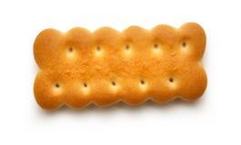 μπισκότα φρέσκα Στοκ Εικόνες
