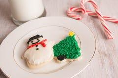 Μπισκότα Χριστουγέννων και κάλαμοι καραμελών Στοκ εικόνες με δικαίωμα ελεύθερης χρήσης