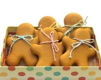 Μπισκότα Χριστουγέννων στο τυλιγμένο κιβώτιο δώρων στο άσπρο υπόβαθρο αρωματικά καρυκεύματα μελοψωμάτων μπισκότων Χριστουγέννων ψ Στοκ Εικόνες