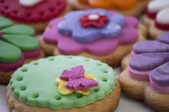 Μπισκότα χρώματος Στοκ εικόνα με δικαίωμα ελεύθερης χρήσης