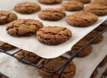 μπισκότα ψησίματος Στοκ φωτογραφίες με δικαίωμα ελεύθερης χρήσης