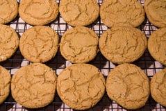 Μπισκότα 9 Στοκ φωτογραφία με δικαίωμα ελεύθερης χρήσης