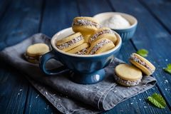 Μπισκότα Alfajore που γεμίζουν με το καραμελοποιημένες γάλα και την καρύδα Στοκ Φωτογραφίες