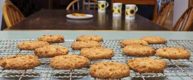 Μπισκότα Anzac για το τσάι πρωινού. Στοκ φωτογραφίες με δικαίωμα ελεύθερης χρήσης