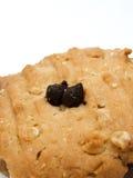 Μπισκότο βρωμών τσιπ σοκολάτας που απομονώνεται Στοκ φωτογραφίες με δικαίωμα ελεύθερης χρήσης
