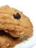Μπισκότο βρωμών τσιπ σοκολάτας που απομονώνεται Στοκ φωτογραφία με δικαίωμα ελεύθερης χρήσης