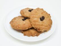 Μπισκότο βρωμών τσιπ σοκολάτας  Στοκ Εικόνες
