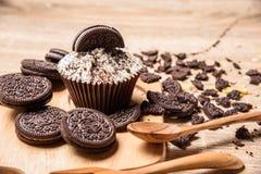 Μπισκότο σοκολάτας και cupcake Στοκ Εικόνα