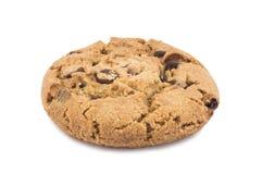 μπισκότο σοκολάτας Στοκ εικόνες με δικαίωμα ελεύθερης χρήσης