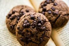 μπισκότο σοκολάτας Στοκ φωτογραφία με δικαίωμα ελεύθερης χρήσης