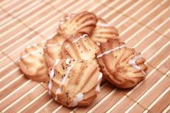 μπισκότο τσιπ σπιτικό στοκ εικόνες με δικαίωμα ελεύθερης χρήσης