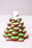 Μπισκότο Χριστουγέννων στοκ εικόνα με δικαίωμα ελεύθερης χρήσης