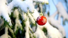 Μπιχλιμπίδια που κρεμούν σε ένα χριστουγεννιάτικο δέντρο απόθεμα βίντεο