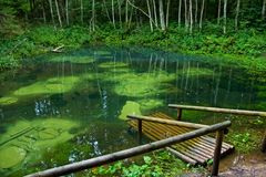μπλε ανοίξεις saula Στοκ φωτογραφίες με δικαίωμα ελεύθερης χρήσης