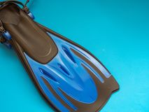 μπλε βατραχοπέδιλα στοκ φωτογραφία με δικαίωμα ελεύθερης χρήσης