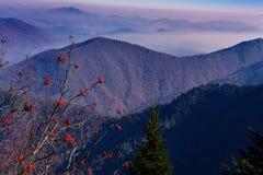 Μπλε βουνά κορυφογραμμών, βόρεια Καρολίνα Στοκ φωτογραφία με δικαίωμα ελεύθερης χρήσης