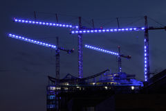 Μπλε γερανοί Στοκ φωτογραφίες με δικαίωμα ελεύθερης χρήσης