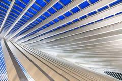 Μπλε γραμμές Λιέγη Στοκ Εικόνα