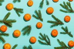 μπλε γυαλί σύνθεσης Χριστουγέννων μπιχλιμπιδιών Πλαίσιο Χριστουγέννων με tangerines, κλάδοι έλατου στον πράσινο πίνακα Επίπεδος β Στοκ φωτογραφία με δικαίωμα ελεύθερης χρήσης