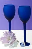 μπλε γυαλιά ζευγών Στοκ εικόνες με δικαίωμα ελεύθερης χρήσης