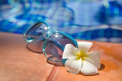 Μπλε γυαλιά ηλίου με το plumeria, λουλούδι frangipani στα σύνορα του α Στοκ Φωτογραφίες