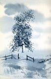 μπλε δέντρο ελεύθερη απεικόνιση δικαιώματος