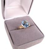 μπλε δαχτυλίδι Στοκ Εικόνα