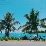 μπλε εξωτικός στοκ φωτογραφίες με δικαίωμα ελεύθερης χρήσης
