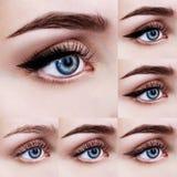 Μπλε θηλυκά μάτια με τα βήματα makeup στοκ εικόνες