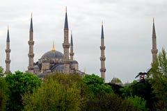 μπλε ΙΙ μουσουλμανικό τέ Στοκ φωτογραφία με δικαίωμα ελεύθερης χρήσης