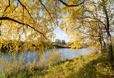 μπλε κίτρινος Στοκ φωτογραφία με δικαίωμα ελεύθερης χρήσης