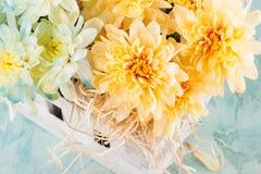 Μπλε και κίτρινο χρυσάνθεμο στο άσπρο ξύλινο κιβώτιο Στοκ φωτογραφία με δικαίωμα ελεύθερης χρήσης
