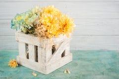 Μπλε και κίτρινο χρυσάνθεμο στο άσπρο ξύλινο κιβώτιο Στοκ φωτογραφίες με δικαίωμα ελεύθερης χρήσης