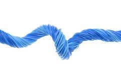 Μπλε καλώδια υπολογιστών δικτύων γραμμών Στοκ Φωτογραφία
