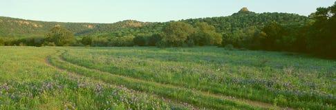 Μπλε καπό στη χώρα Hill στοκ φωτογραφία