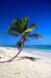 μπλε καραϊβικός ουρανός &phi Στοκ Εικόνες