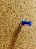 Μπλε καρφί σε Tackboard Στοκ Εικόνες