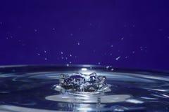 μπλε κορώνα Στοκ Εικόνες