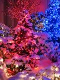 μπλε κόκκινο Χριστουγένν στοκ εικόνα